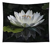 Reflections Of Beauty Tapestry