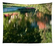 Reflections Of Colours  Tapestry