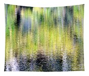 Reflections Of Fall 3 Tapestry