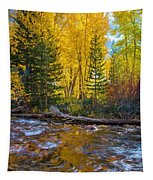 Reflections Of Gold Tapestry