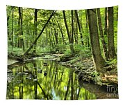 Reflections Of Tranquility Tapestry