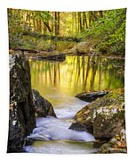 Reflective Pools Tapestry