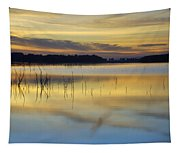 Reflexions Tapestry