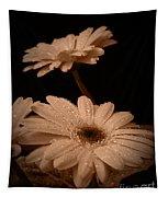 Renewal Sepia Tapestry