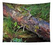Replenishing The Earth I Tapestry