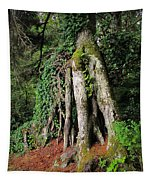 Replenishing The Earth II Tapestry