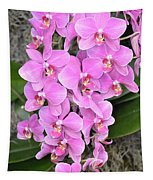 Resplendent Orchid Tapestry