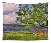 Resting Among The Bluebonnets Tapestry