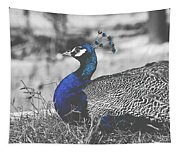 Resting Peacock Tapestry