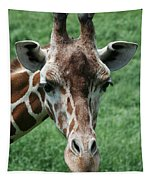 Reticulated Giraffe Tapestry