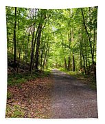 Wooded Path 12 Tapestry