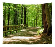 Wooded Path 15 Tapestry