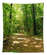 Wooded Path 16 Tapestry