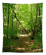 Wooded Path 17 Tapestry