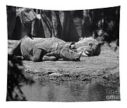 Rhino Nap Time Tapestry