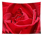 Rich Red Tapestry