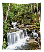 Ricketts Glen Delaware Falls Tapestry