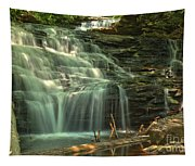 Ricketts Glen Shawnee Waterfall Tapestry