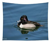 Ring Neck Duck  Tapestry