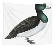 Ring-necked Duck  Tapestry