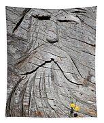 Rip Van Winkle Tapestry