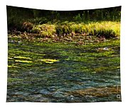 River Colors Tapestry