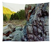 River Flowing Through Rocks, Black Tapestry
