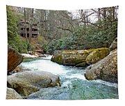 River House In Spring Tapestry