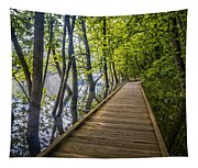 River Of Souls Tapestry