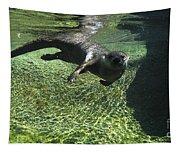 River Otter-7714 Tapestry