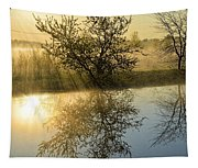 River Rays Tapestry