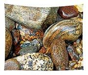 River Rocks 11 Tapestry