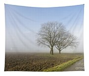 Road In The Fog Tapestry