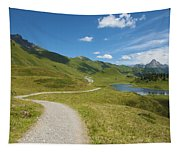Road In The Mountains Tapestry