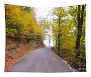 Road With Autumn Trees Tapestry