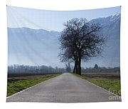 Road With Trees Tapestry