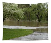 Roadway Turned Boat Launch Tapestry