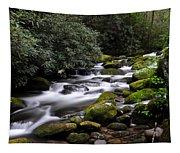 Roaring Fork Tapestry