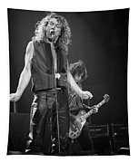 Robert Plant And Jimmy Page Tapestry