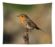 Robin Tapestry