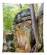 Rock Formation Wildcat Den State Park Tapestry