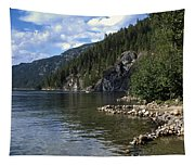 Rock Pools On Christina Lake Tapestry