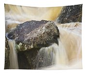 Rocks And Rapids #2 Tapestry
