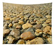 Rocks On My Path Tapestry