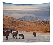 Rocky Mountain Country Morning Tapestry