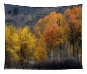 Rocky Mountain Fall Tapestry