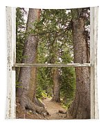 Rocky Mountain Forest Window View Tapestry