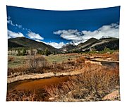 Rocky Mountain Meadows Tapestry