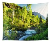Rocky Mountain River Tapestry