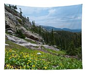 Rocky Mountain Summer Tapestry